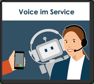 Voice im Service